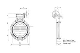 Diagram of large gear type butterfly valve